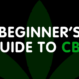 Beginner's Guide to CBD