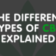 The Different Types of CBD Explained